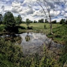 farm_field2_property